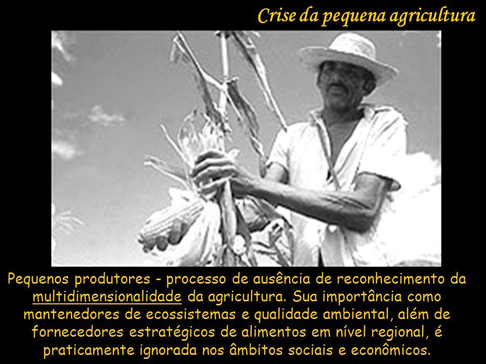 Crise da pequena agricultura