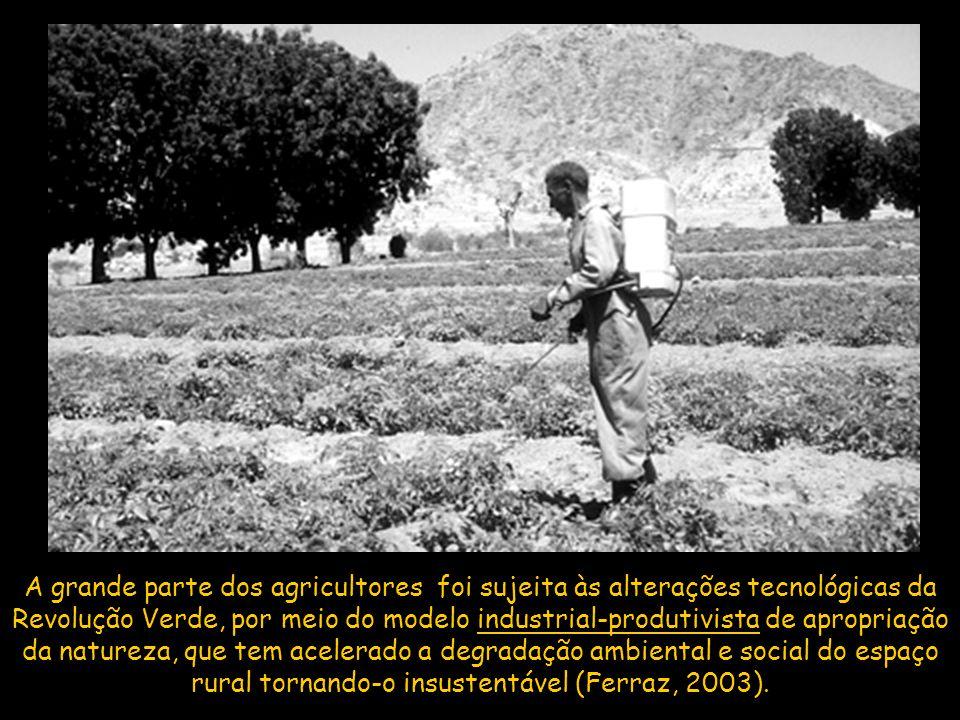 A grande parte dos agricultores foi sujeita às alterações tecnológicas da Revolução Verde, por meio do modelo industrial-produtivista de apropriação da natureza, que tem acelerado a degradação ambiental e social do espaço rural tornando-o insustentável (Ferraz, 2003).