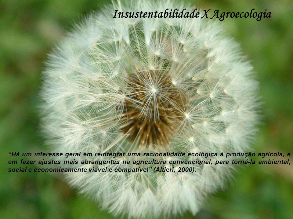 Insustentabilidade X Agroecologia