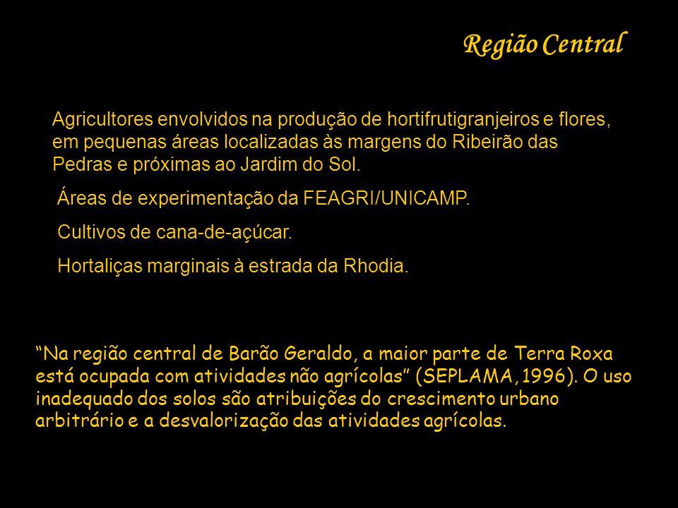 Região Central
