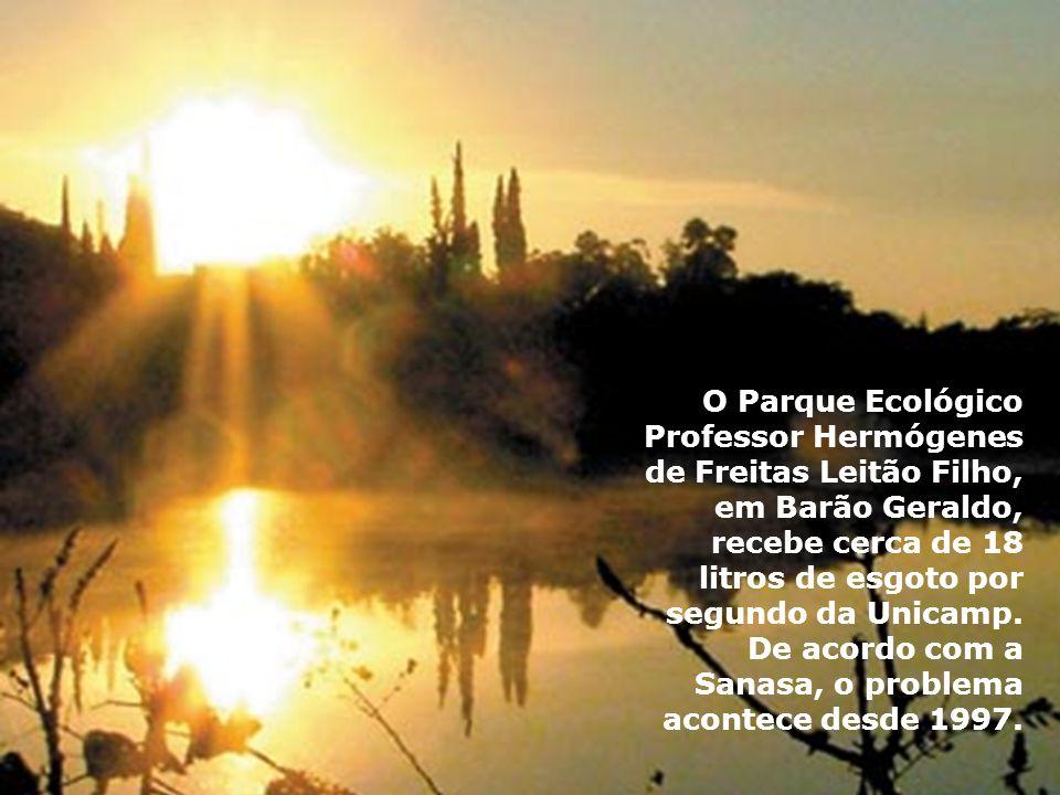 O Parque Ecológico Professor Hermógenes de Freitas Leitão Filho, em Barão Geraldo, recebe cerca de 18 litros de esgoto por segundo da Unicamp.