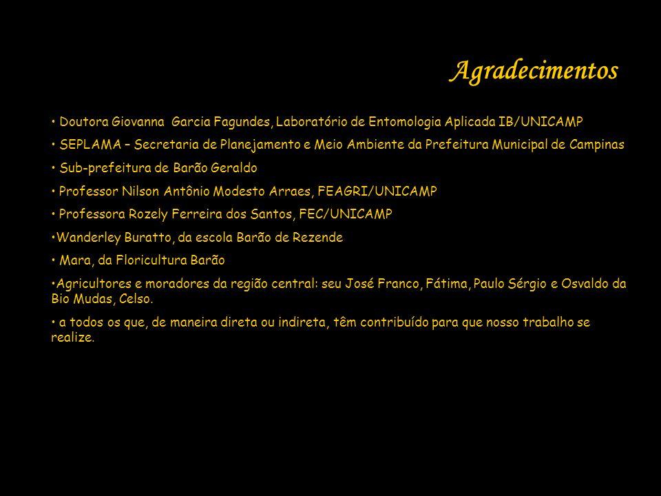 Agradecimentos Doutora Giovanna Garcia Fagundes, Laboratório de Entomologia Aplicada IB/UNICAMP.