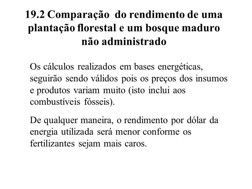19.2 Comparação do rendimento de uma plantação florestal e um bosque maduro não administrado