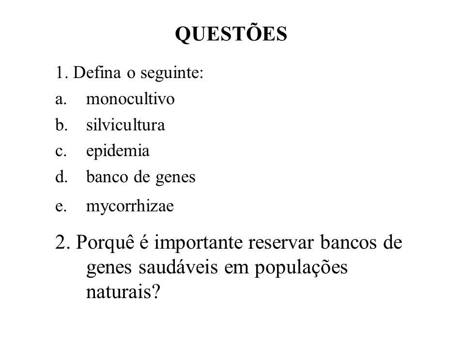 QUESTÕES 1. Defina o seguinte: monocultivo. silvicultura. epidemia. banco de genes. mycorrhizae.