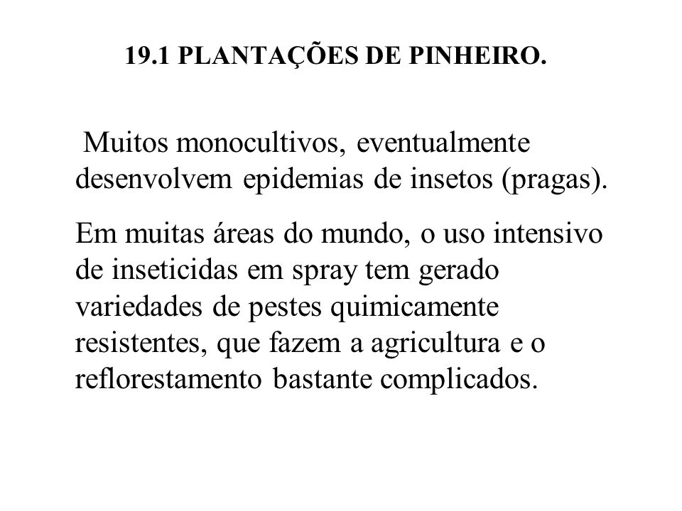 19.1 PLANTAÇÕES DE PINHEIRO.
