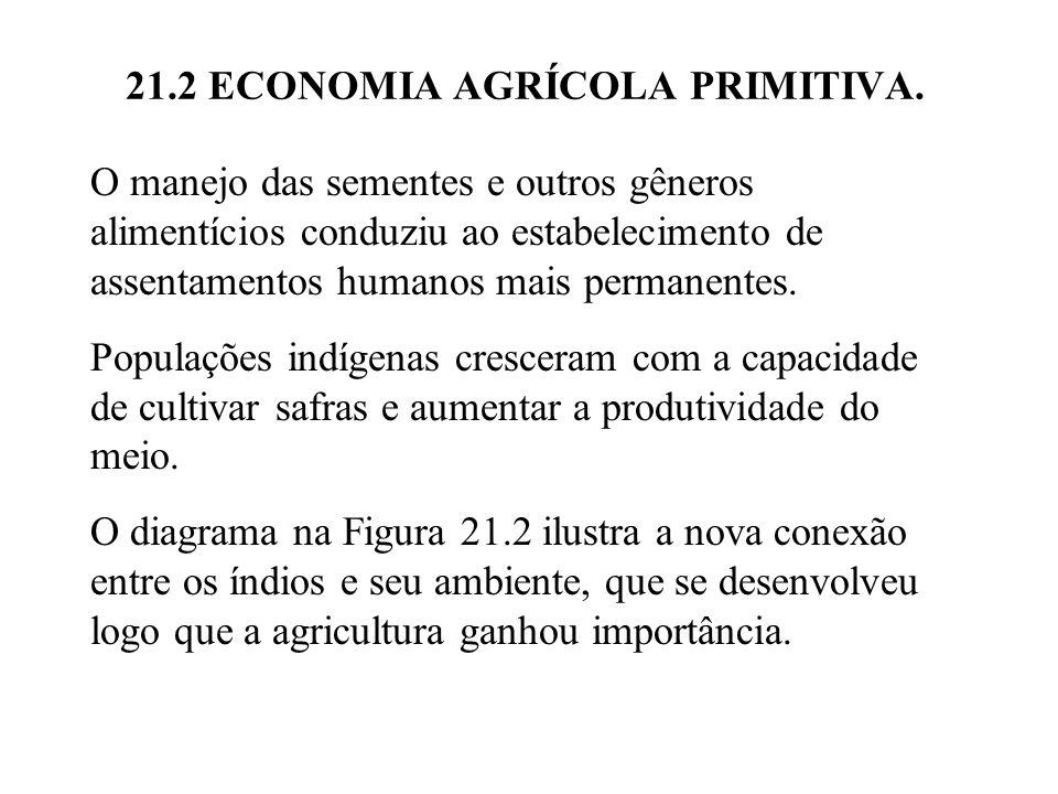 21.2 ECONOMIA AGRÍCOLA PRIMITIVA.