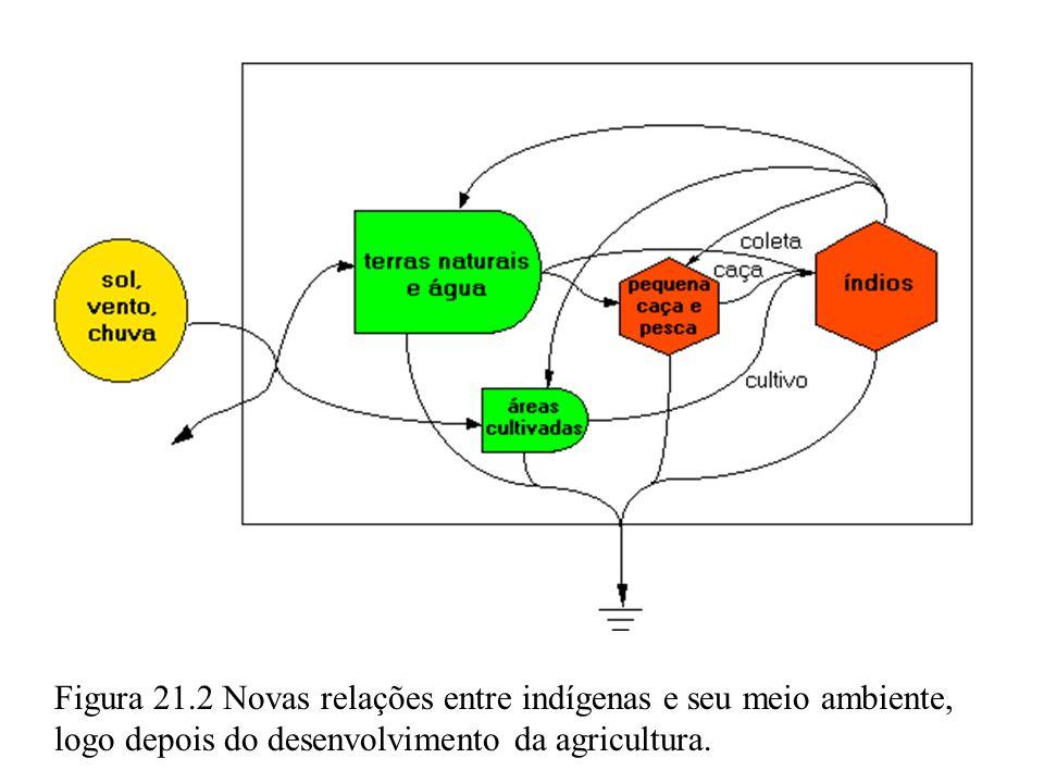 Figura 21.2 Novas relações entre indígenas e seu meio ambiente, logo depois do desenvolvimento da agricultura.