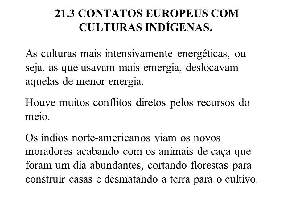 21.3 CONTATOS EUROPEUS COM CULTURAS INDÍGENAS.