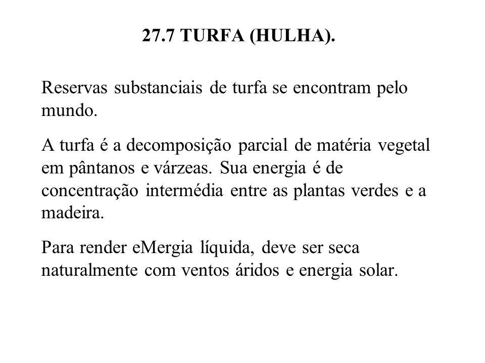 27.7 TURFA (HULHA). Reservas substanciais de turfa se encontram pelo mundo.