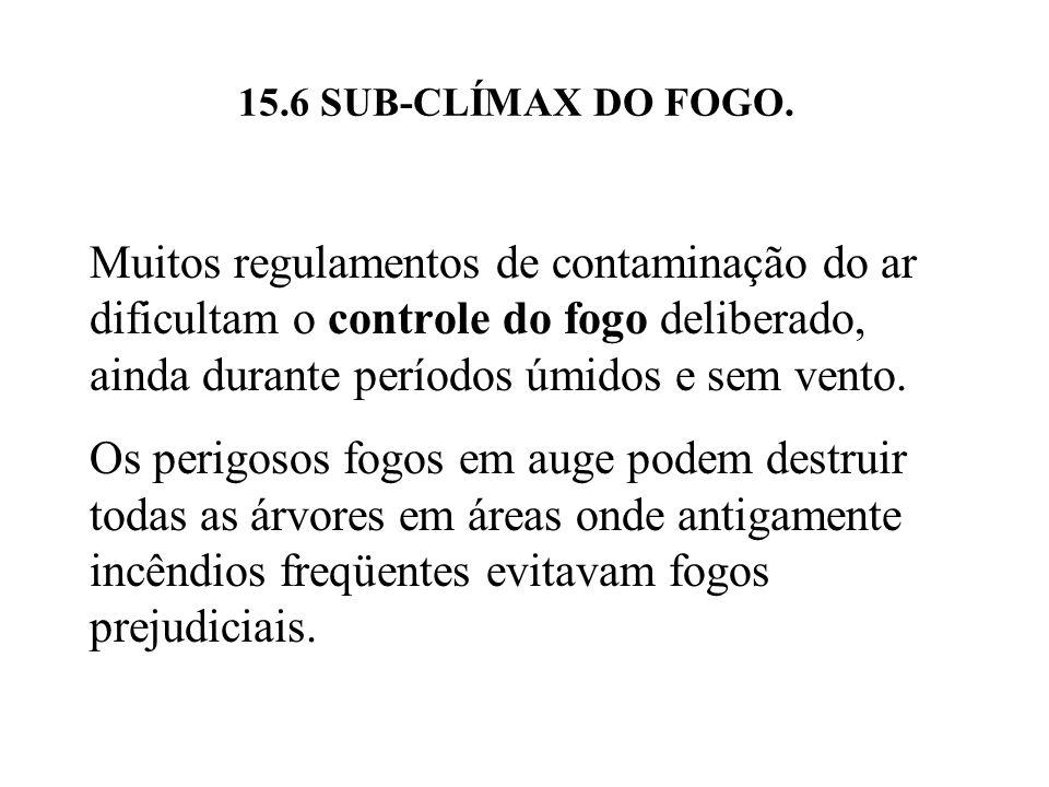 15.6 SUB-CLÍMAX DO FOGO.