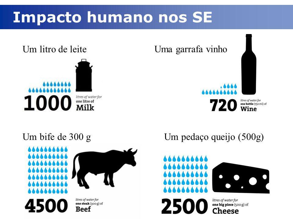 Impacto humano nos SE Um litro de leite Uma garrafa vinho