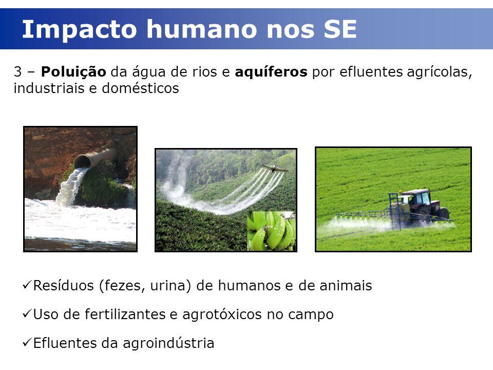 Impacto humano nos SE 3 – Poluição da água de rios e aquíferos por efluentes agrícolas, industriais e domésticos.