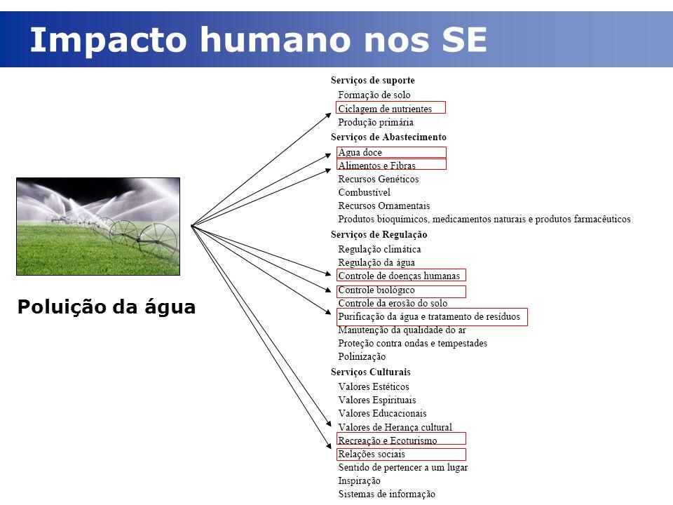 Impacto humano nos SE Poluição da água
