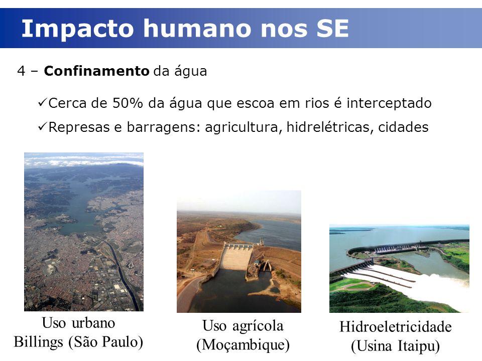 Impacto humano nos SE Uso urbano Billings (São Paulo)