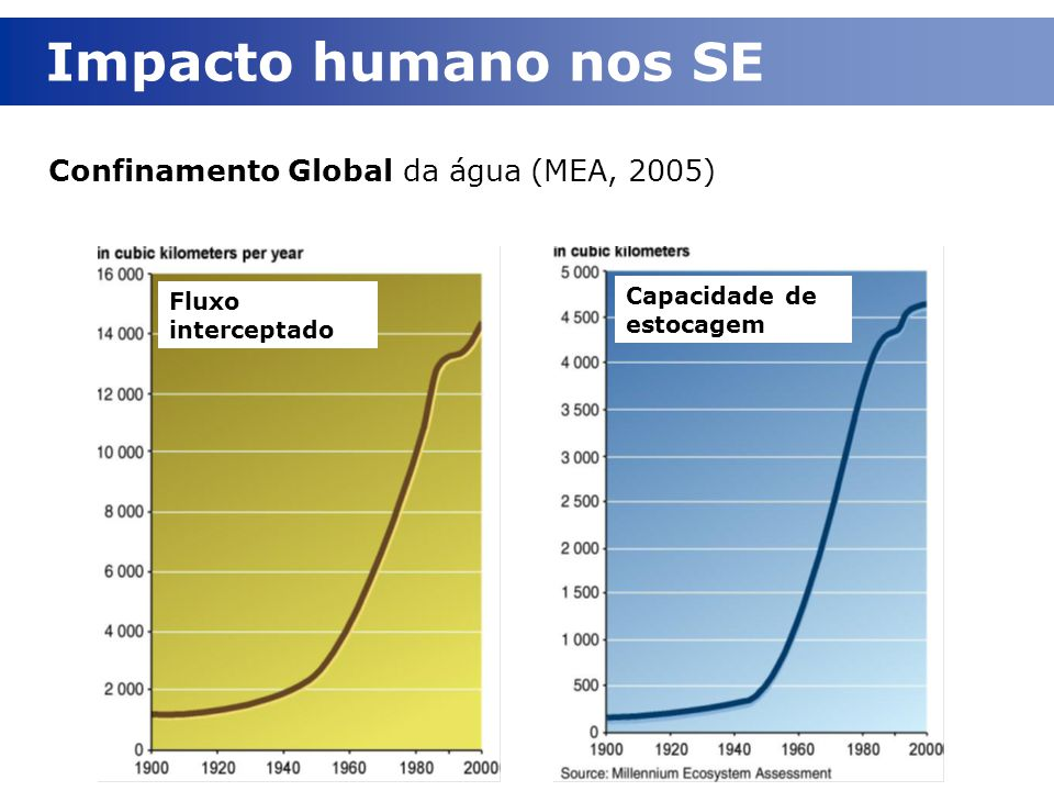 Impacto humano nos SE Confinamento Global da água (MEA, 2005)