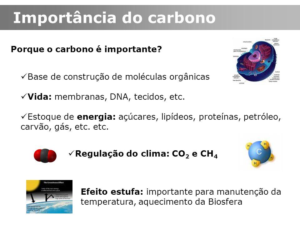 Importância do carbono