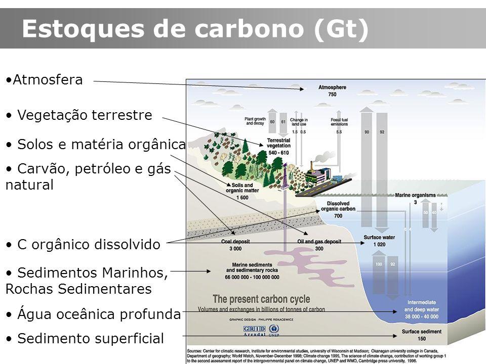 Estoques de carbono (Gt)