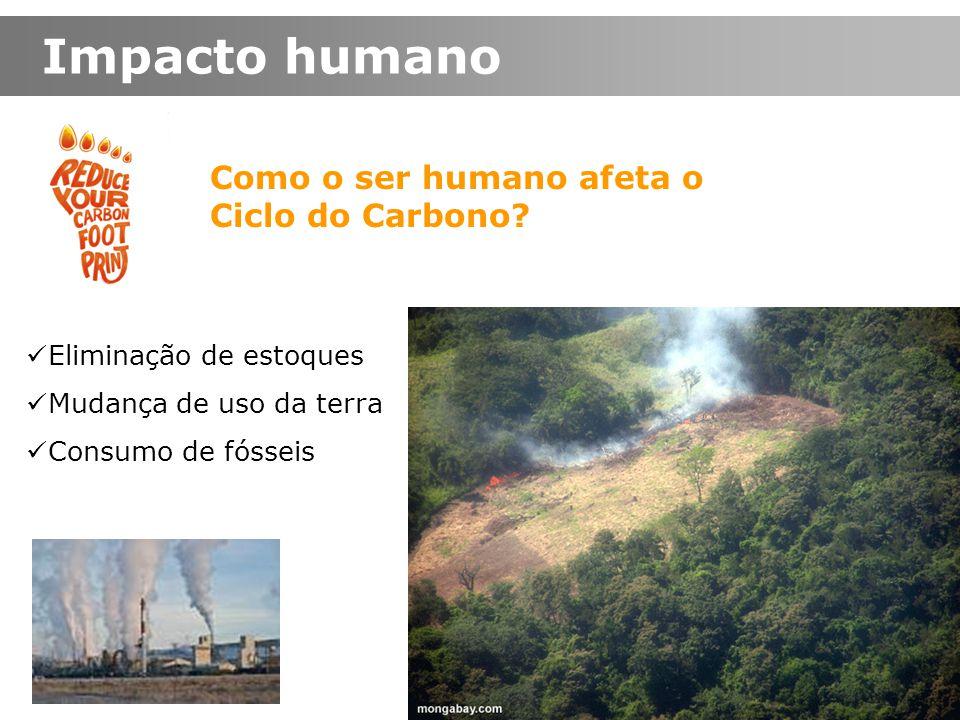Impacto humano Como o ser humano afeta o Ciclo do Carbono