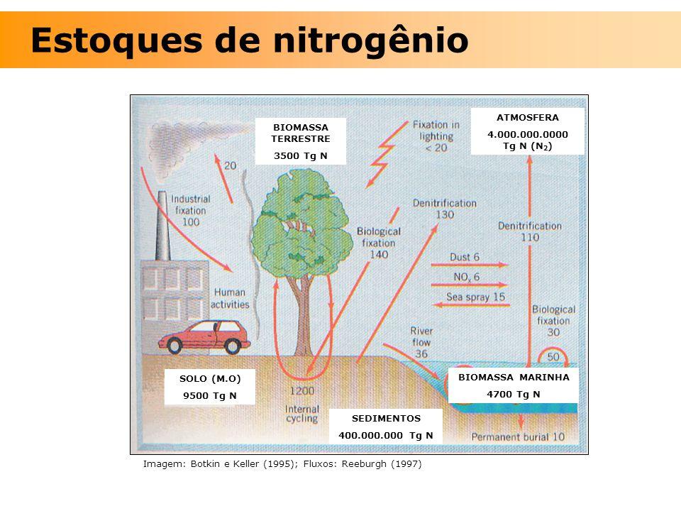 Estoques de nitrogênio