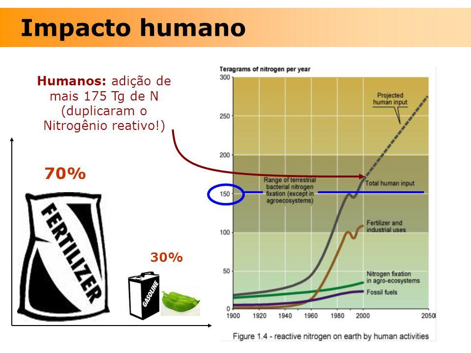 Humanos: adição de mais 175 Tg de N (duplicaram o