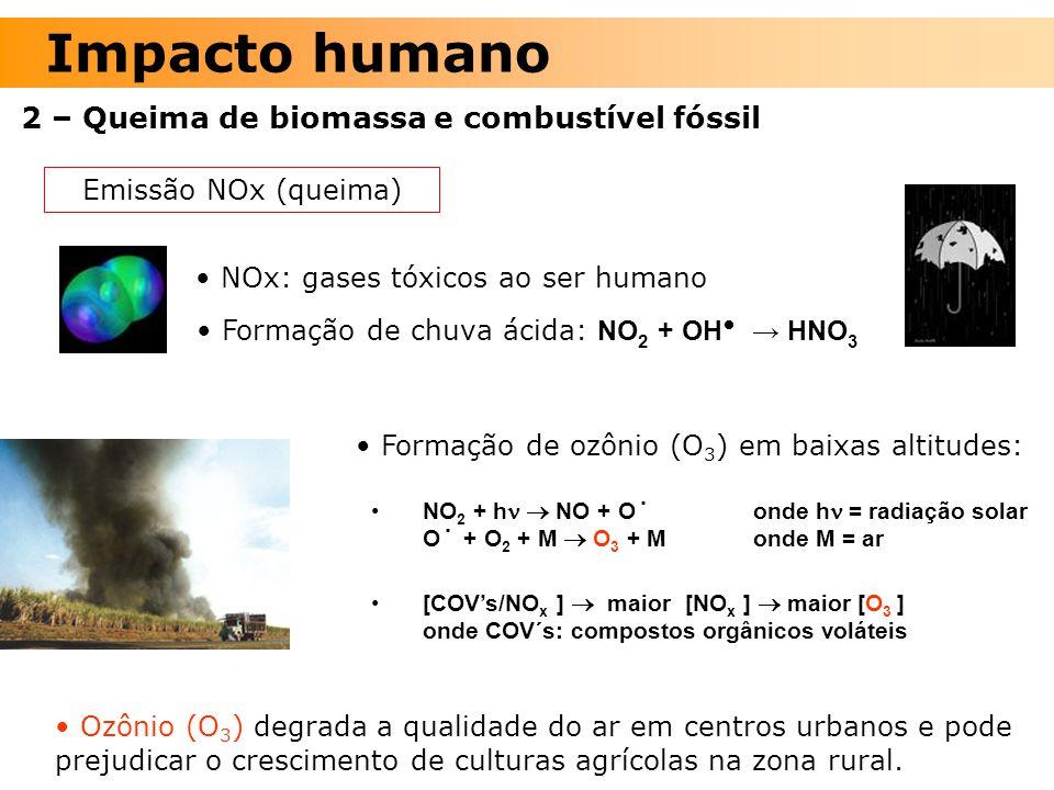 Impacto humano 2 – Queima de biomassa e combustível fóssil