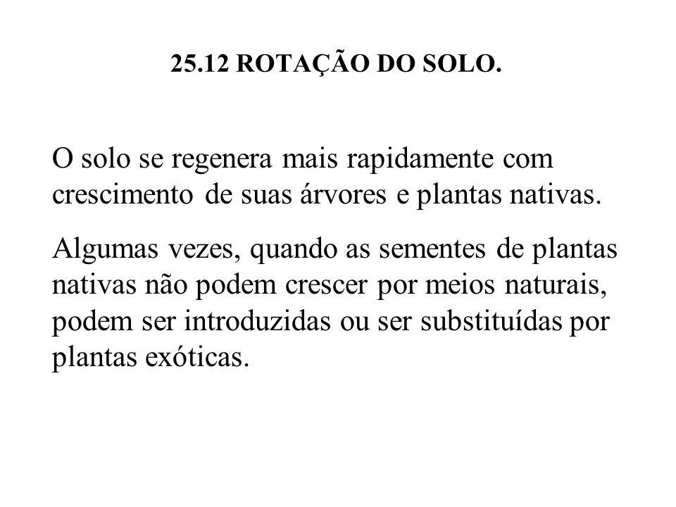25.12 ROTAÇÃO DO SOLO. O solo se regenera mais rapidamente com crescimento de suas árvores e plantas nativas.