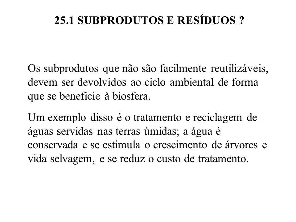 25.1 SUBPRODUTOS E RESÍDUOS