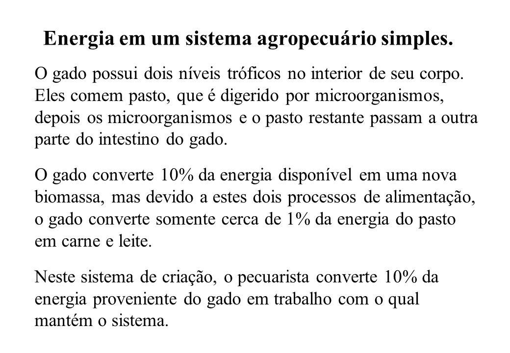 Energia em um sistema agropecuário simples.