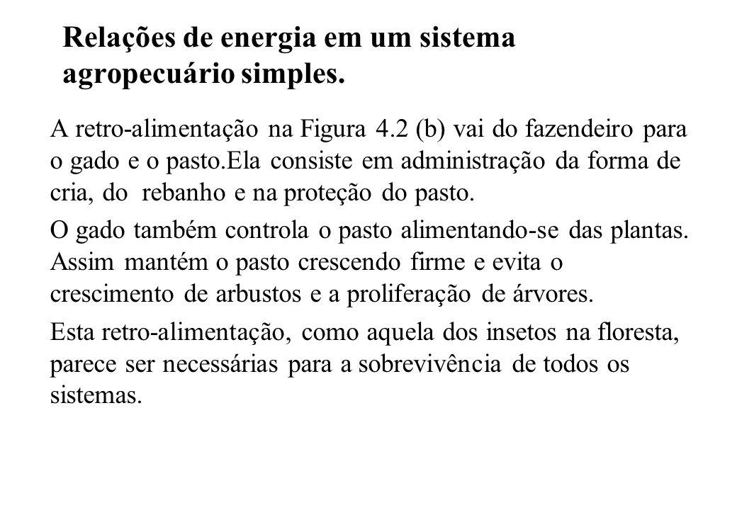 Relações de energia em um sistema agropecuário simples.