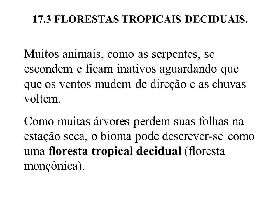 17.3 FLORESTAS TROPICAIS DECIDUAIS.