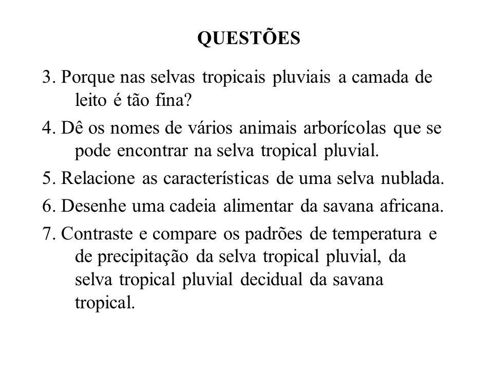 QUESTÕES 3. Porque nas selvas tropicais pluviais a camada de leito é tão fina