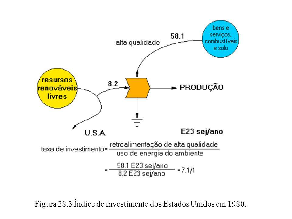 Figura 28.3 Índice de investimento dos Estados Unidos em 1980.