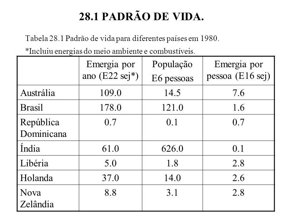 28.1 PADRÃO DE VIDA. Emergia por ano (E22 sej*) População E6 pessoas
