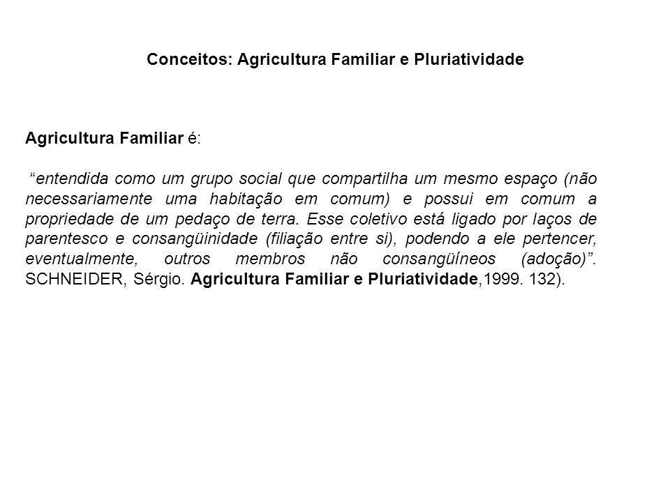 Conceitos: Agricultura Familiar e Pluriatividade