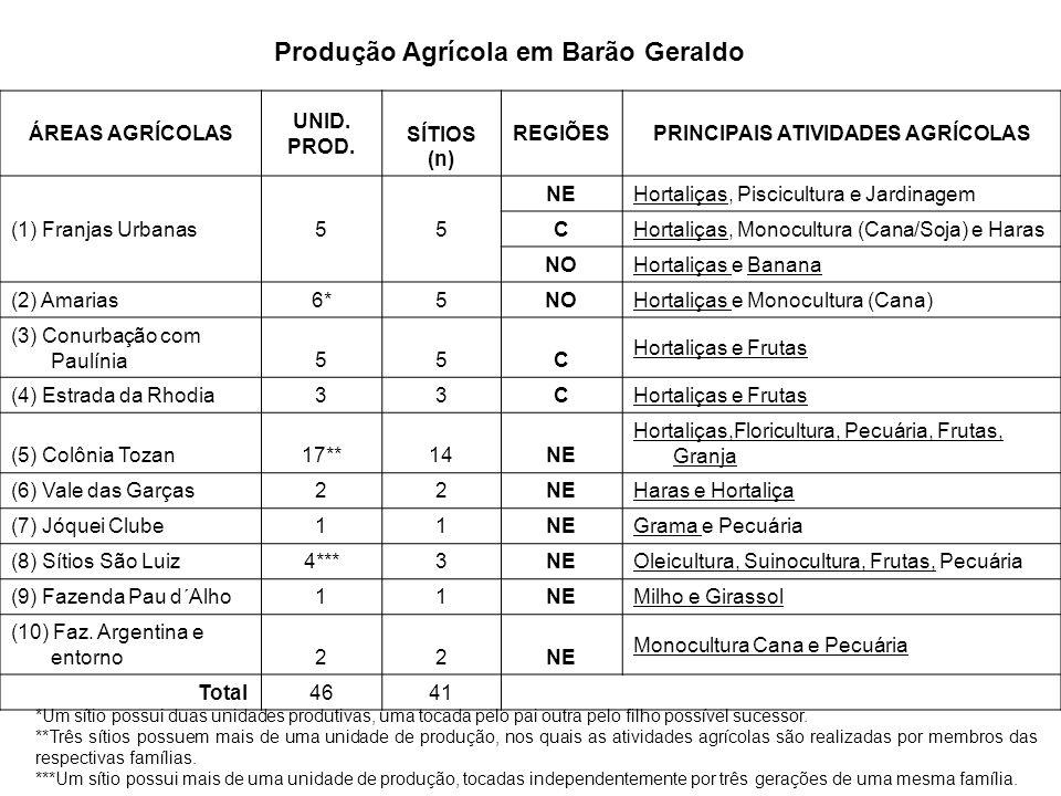 Produção Agrícola em Barão Geraldo PRINCIPAIS ATIVIDADES AGRÍCOLAS
