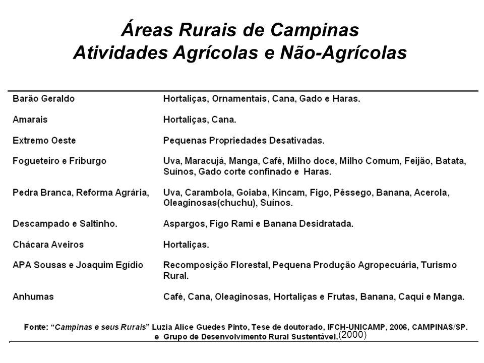 Áreas Rurais de Campinas Atividades Agrícolas e Não-Agrícolas