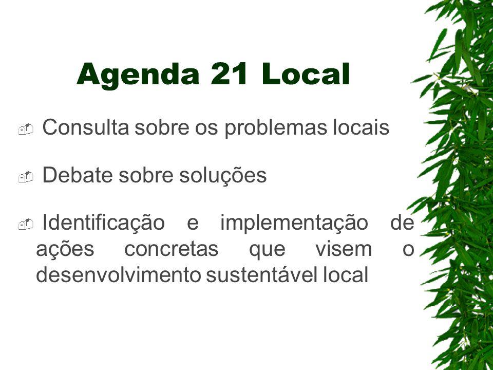 Agenda 21 Local Consulta sobre os problemas locais