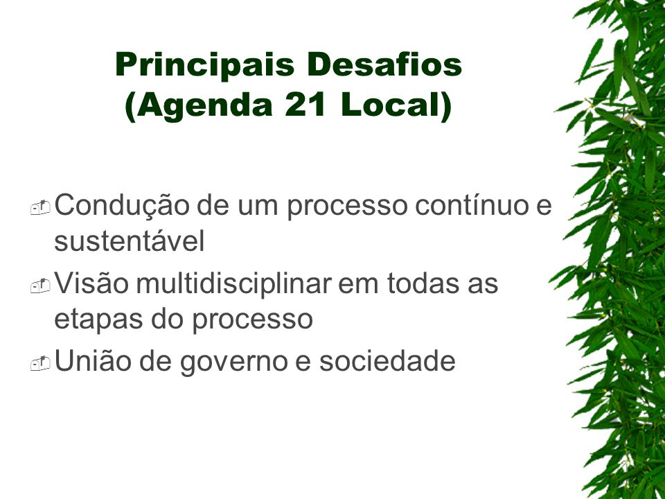 Principais Desafios (Agenda 21 Local)