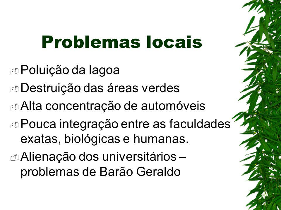 Problemas locais Poluição da lagoa Destruição das áreas verdes