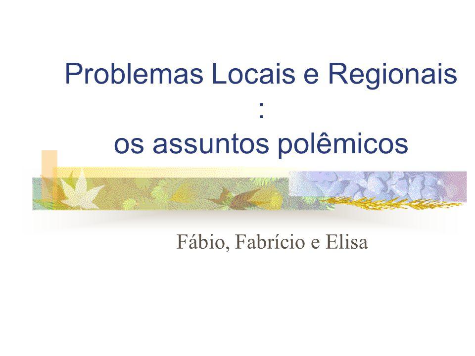 Problemas Locais e Regionais : os assuntos polêmicos