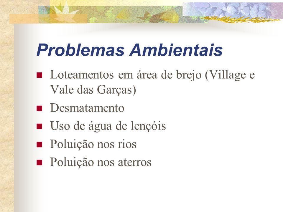Problemas Ambientais Loteamentos em área de brejo (Village e Vale das Garças) Desmatamento. Uso de água de lençóis.