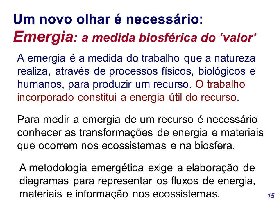 Um novo olhar é necessário: Emergia: a medida biosférica do 'valor'