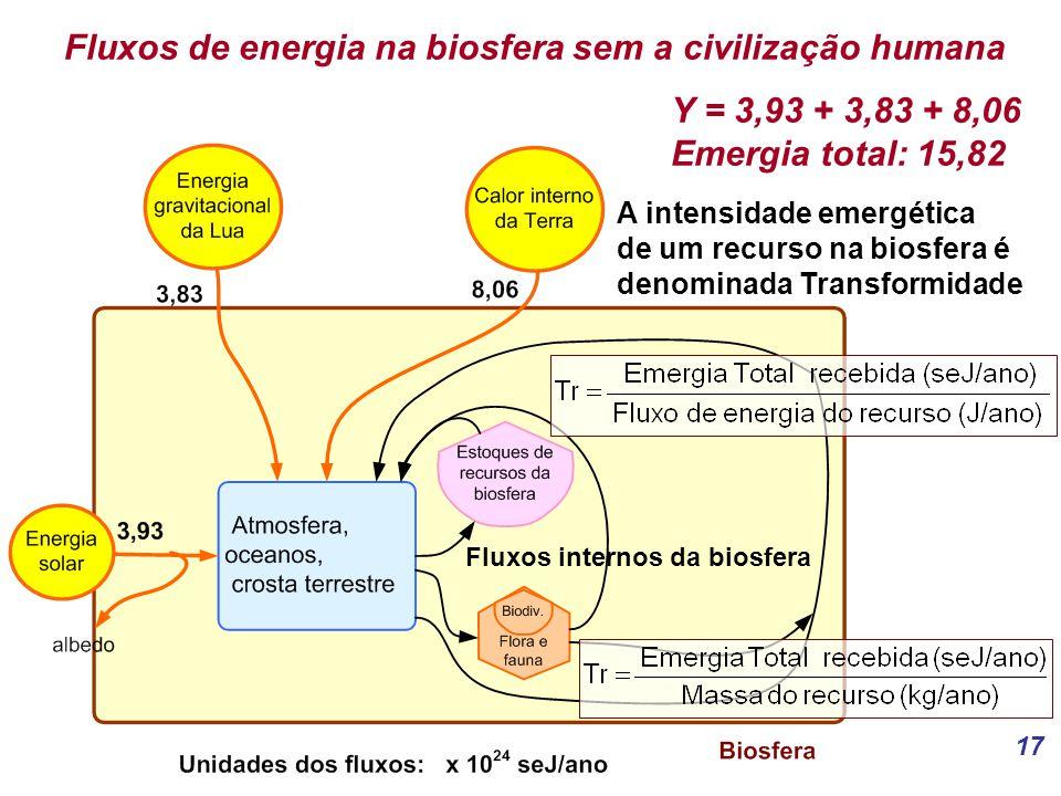 Fluxos de energia na biosfera sem a civilização humana