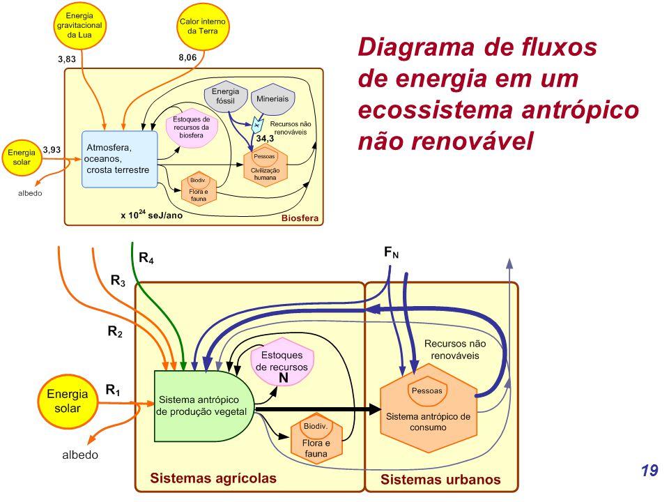 Diagrama de fluxos de energia em um ecossistema antrópico não renovável