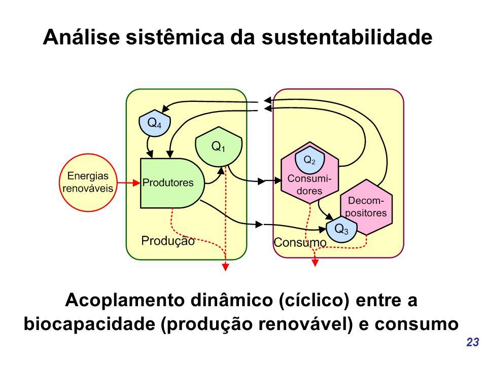 Análise sistêmica da sustentabilidade