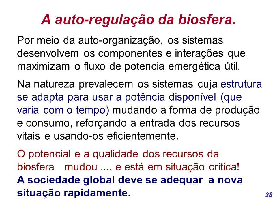 A auto-regulação da biosfera.