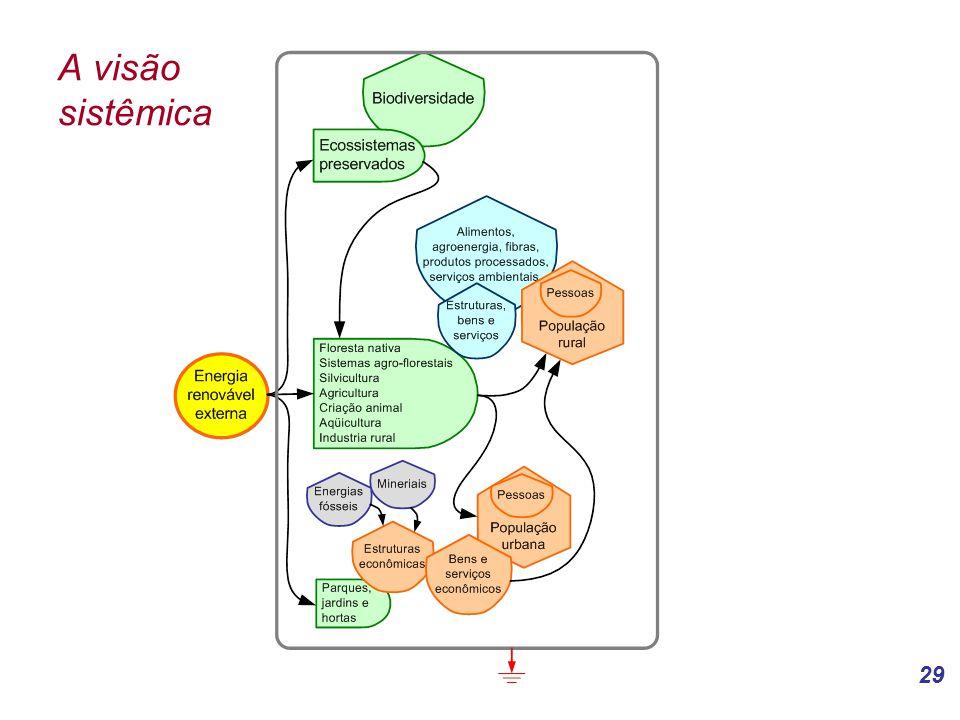 A visão sistêmica