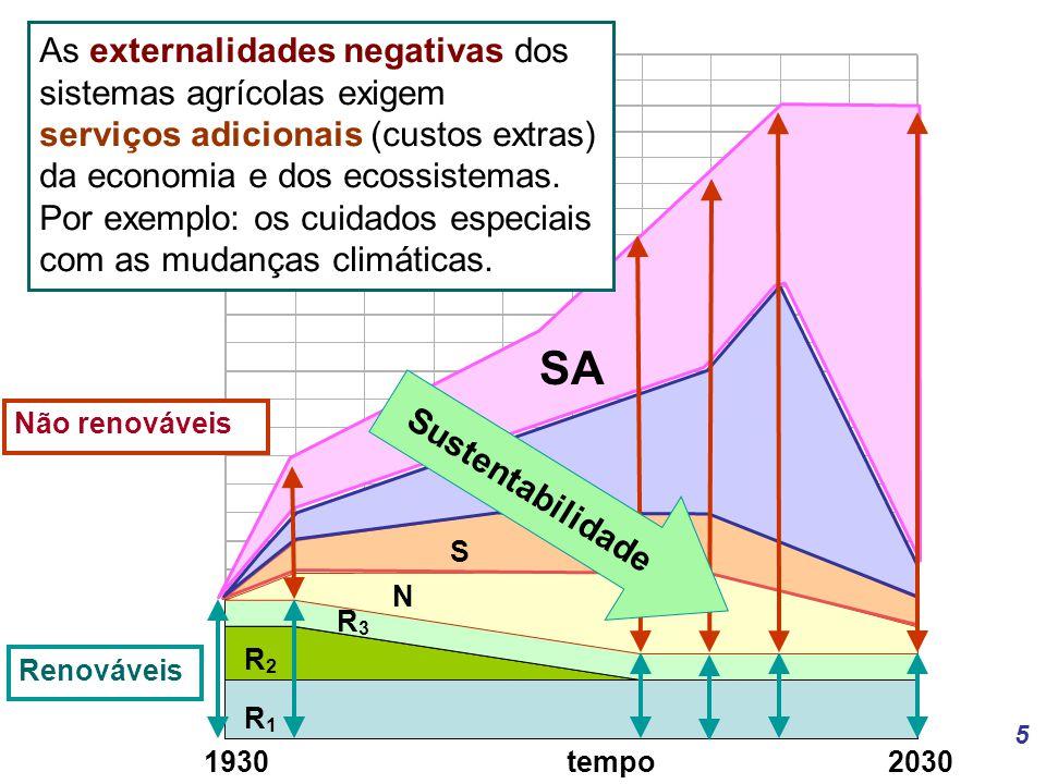 As externalidades negativas dos sistemas agrícolas exigem serviços adicionais (custos extras) da economia e dos ecossistemas. Por exemplo: os cuidados especiais com as mudanças climáticas.