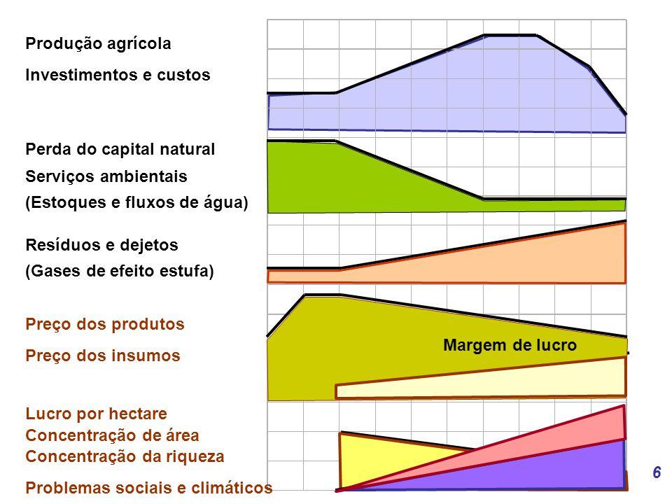 Produção agrícola Investimentos e custos. Perda do capital natural. Serviços ambientais. (Estoques e fluxos de água)
