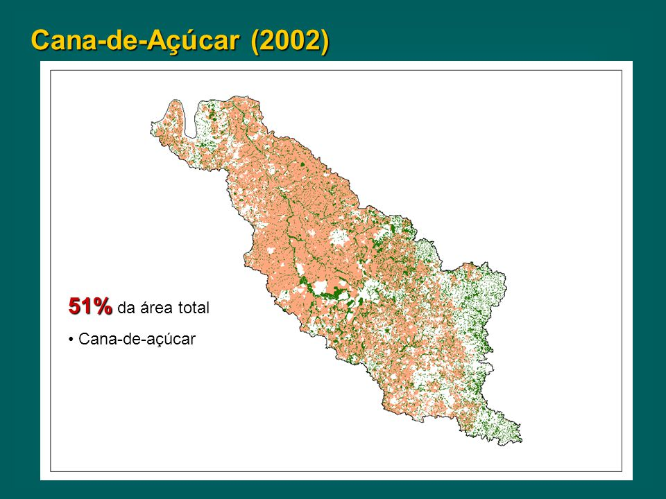 Cana-de-Açúcar (2002) 51% da área total Cana-de-açúcar